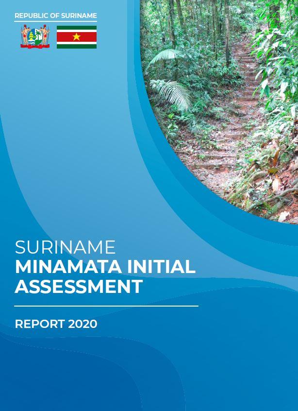 Suriname Minimata Initial Assesment cover photo